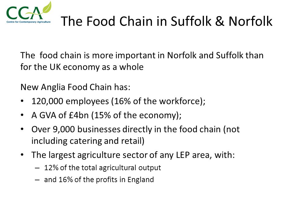 The Food Chain in Suffolk & Norfolk The food chain is more important in Norfolk and Suffolk than for the UK economy as a whole New Anglia Food Chain has: 120,000 employees (16% of the workforce); A GVA of £4bn (15% of the economy); Over 9,000 businesses directly in the food chain (not including catering and retail) The largest agriculture sector of any LEP area, with: – 12% of the total agricultural output – and 16% of the profits in England