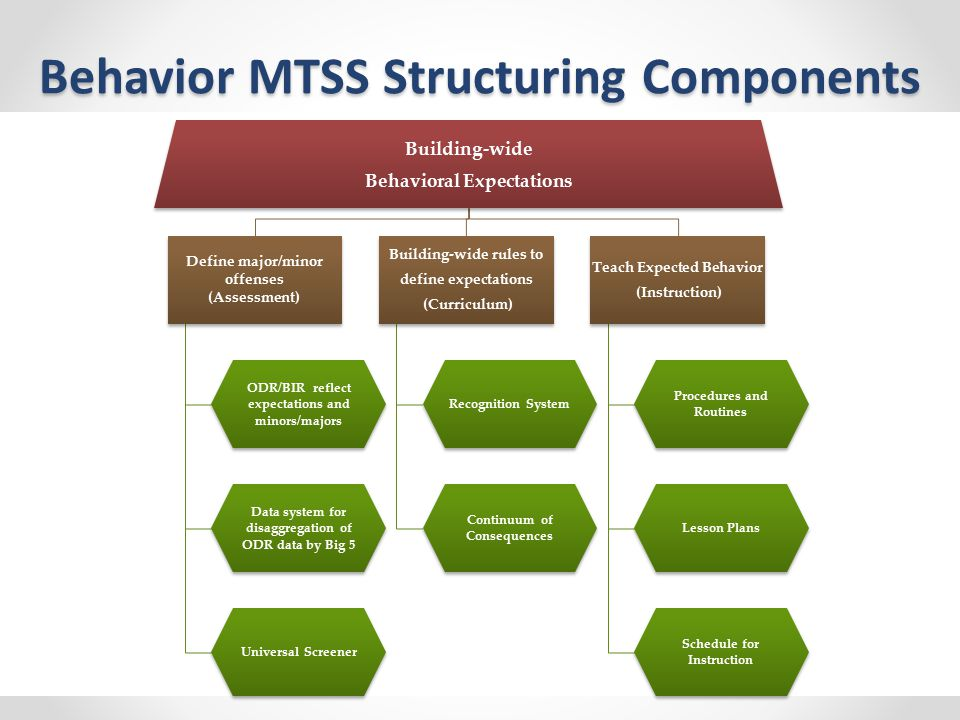 Behavior MTSS Structuring Components Building-wide Behavioral Expectations Define major/minor offenses (Assessment) ODR/BIR reflect expectations and minors/majors Data system for disaggregation of ODR data by Big 5 Universal Screener Building-wide rules to define expectations (Curriculum) Recognition System Continuum of Consequences Teach Expected Behavior (Instruction) Procedures and Routines Lesson Plans Schedule for Instruction