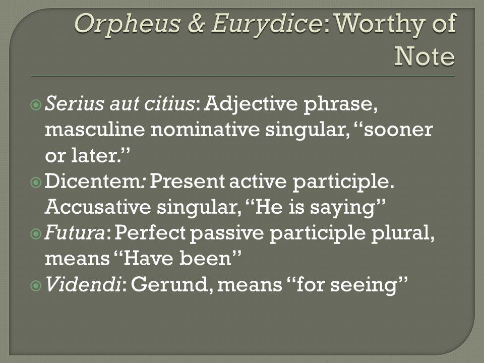  Serius aut citius: Adjective phrase, masculine nominative singular, sooner or later.  Dicentem: Present active participle.
