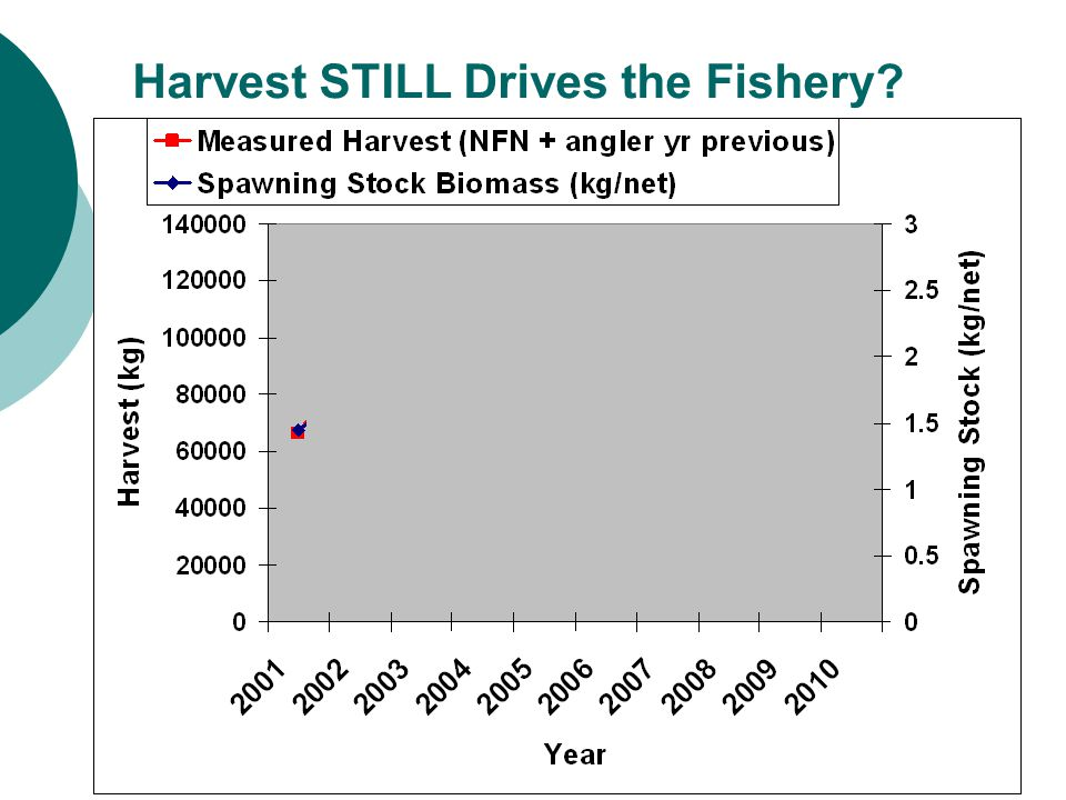 Harvest STILL Drives the Fishery?