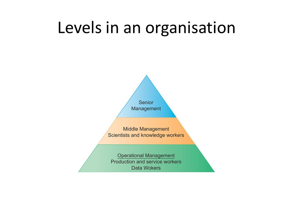 Levels in an organisation