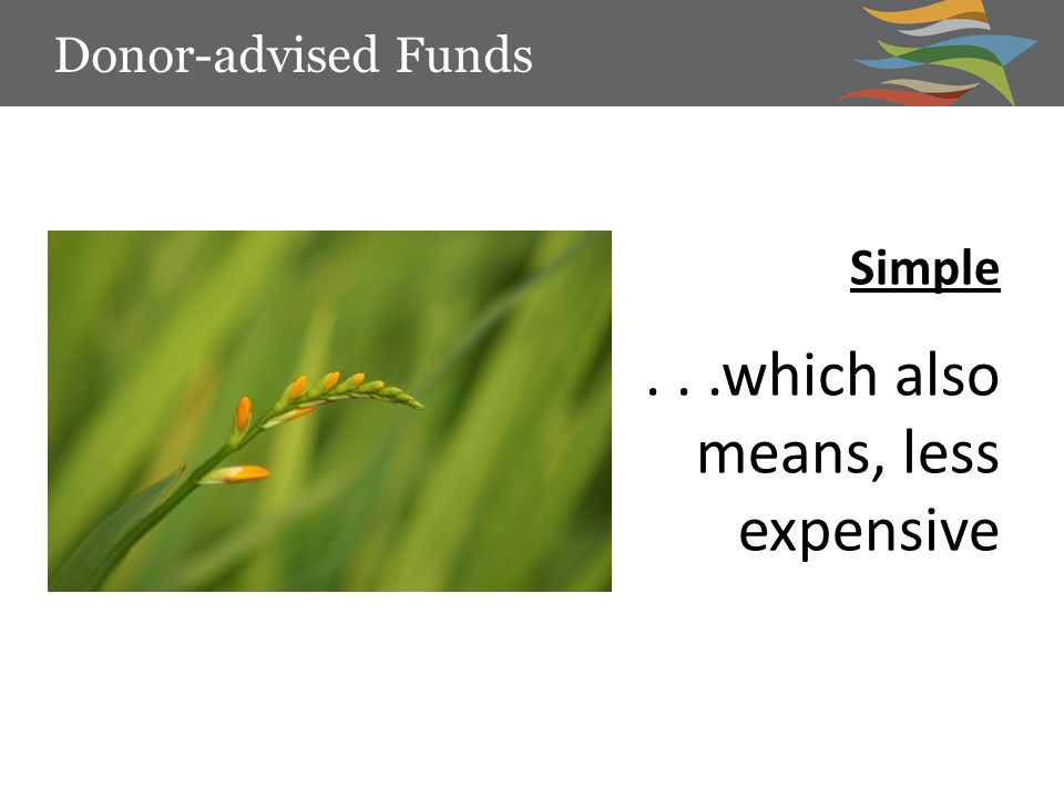 Simple...which also means, less expensive Donor-advised Funds