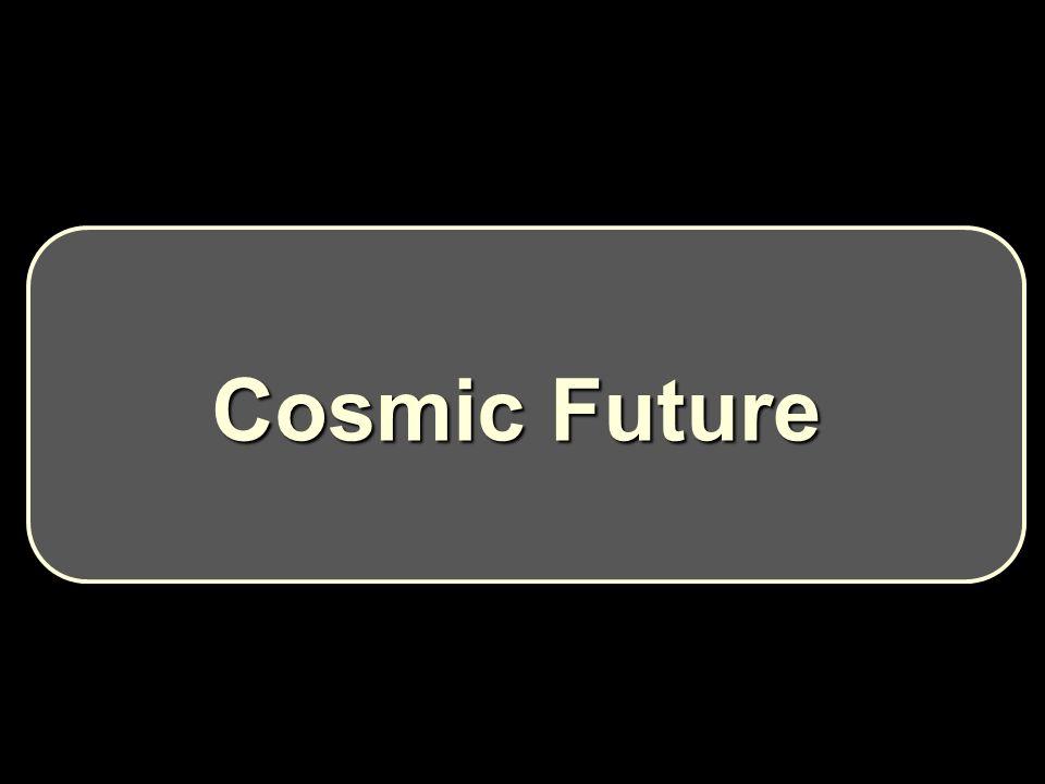 Cosmic Future Cosmic Future