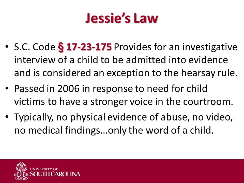 Jessie's Law § 17-23-175 S.C.