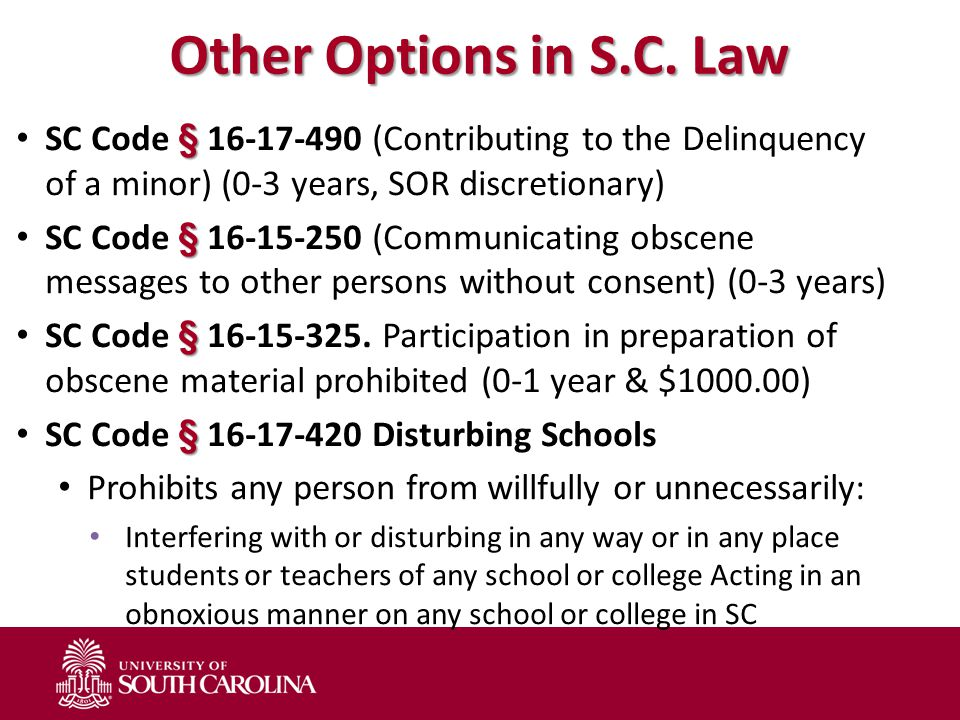 Other Options in S.C. Law § SC Code § 16-17-490 (Contributing to the Delinquency of a minor) (0-3 years, SOR discretionary) § SC Code § 16-15-250 (Com