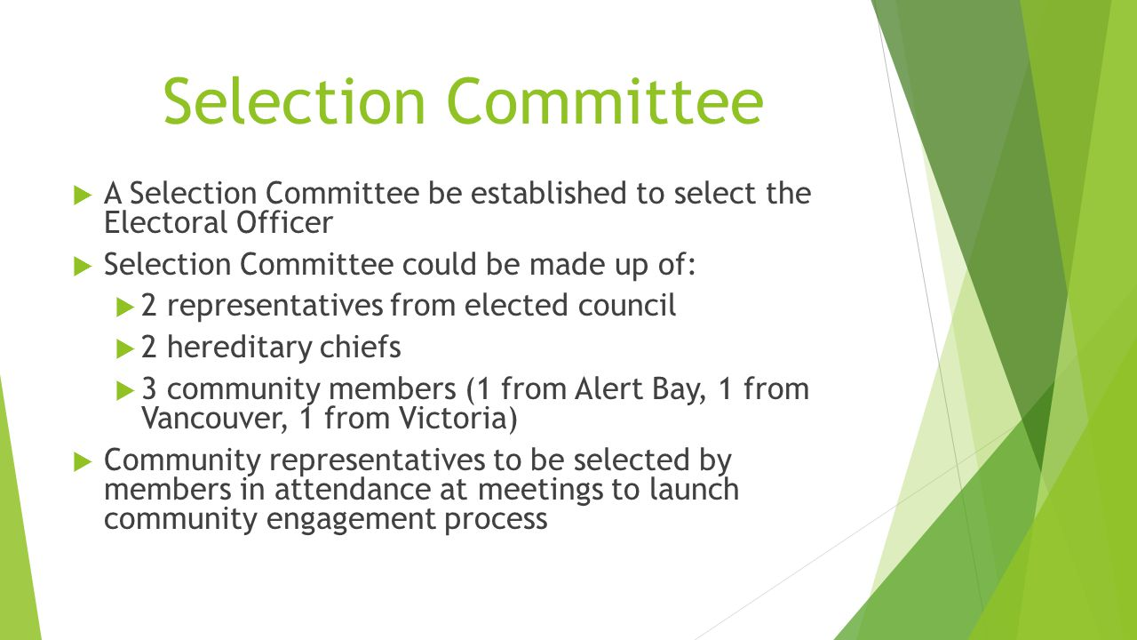 Selection Committee  A Selection Committee be established to select the Electoral Officer  Selection Committee could be made up of:  2 representati