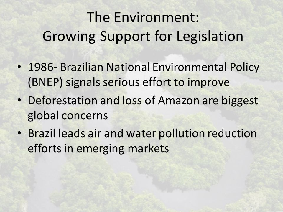 The Environment: Growing Support for Legislation 1986- Brazilian National Environmental Policy (BNEP) signals serious effort to improve Deforestation and loss of Amazon are biggest global concerns Brazil leads air and water pollution reduction efforts in emerging markets