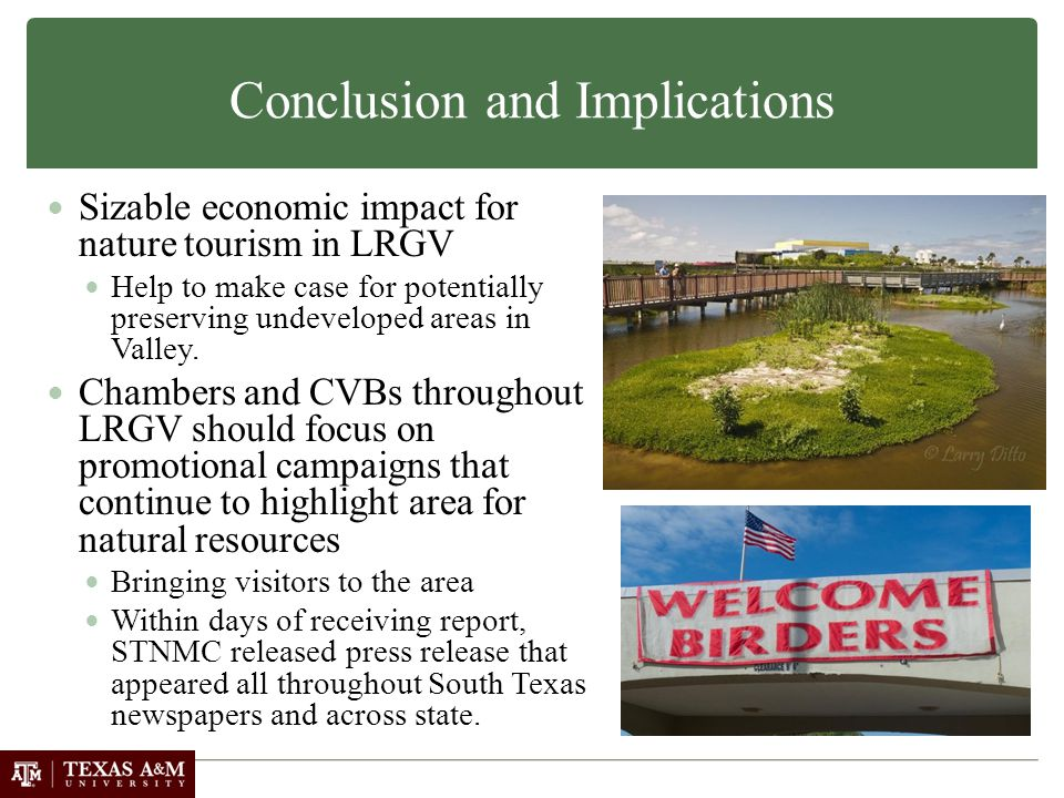 Conclusion and Implications Sizable economic impact for nature tourism in LRGV Help to make case for potentially preserving undeveloped areas in Valley.