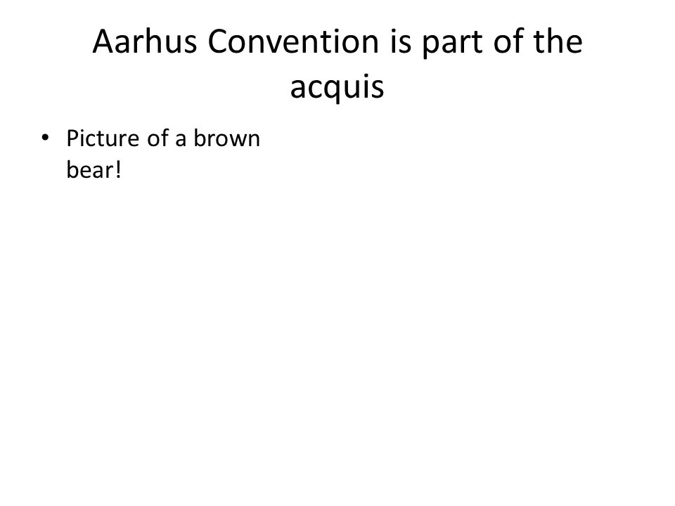 Aarhus Convention is part of the acquis Picture of a brown bear!