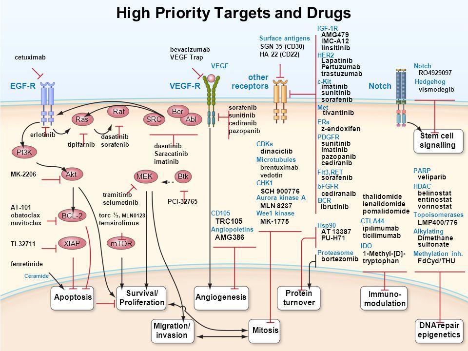 EGF-RVEGF-RNotch other receptors Apoptosis Survival/ Proliferation Angiogenesis Protein turnover Mitosis Immuno- modulation Migration/ invasion DNA re