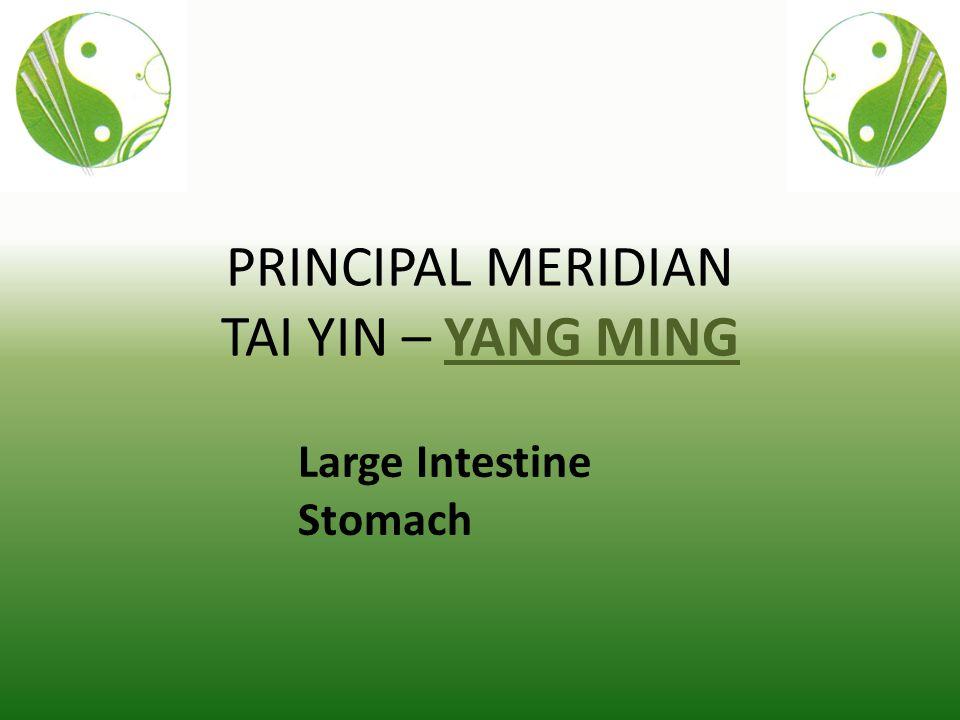 PRINCIPAL MERIDIAN TAI YIN – YANG MING Large Intestine Stomach