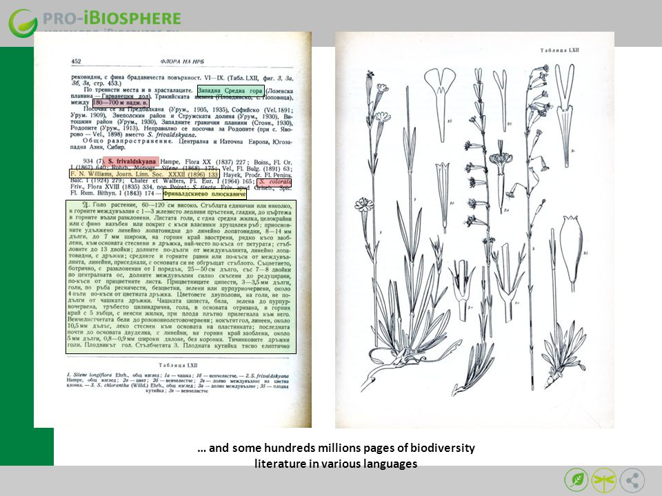 … and some hundreds millions pages of biodiversity literature in various languages