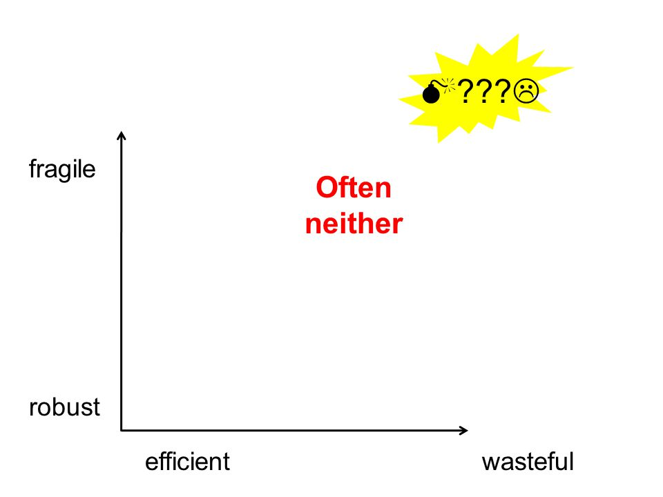wasteful fragile robust efficient Often neither  ??? 
