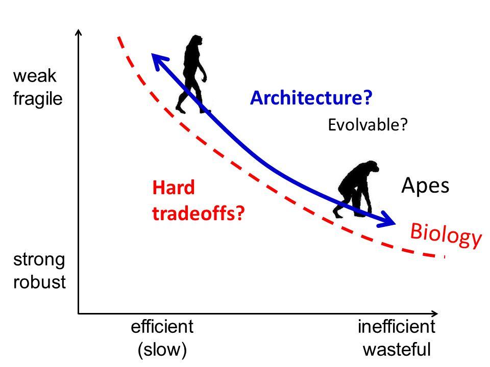 inefficient wasteful weak fragile efficient (slow) strong robust Biology Hard tradeoffs.