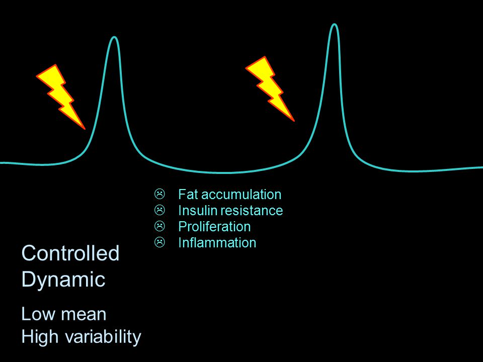 Controlled Dynamic Low mean High variability  Fat accumulation  Insulin resistance  Proliferation  Inflammation