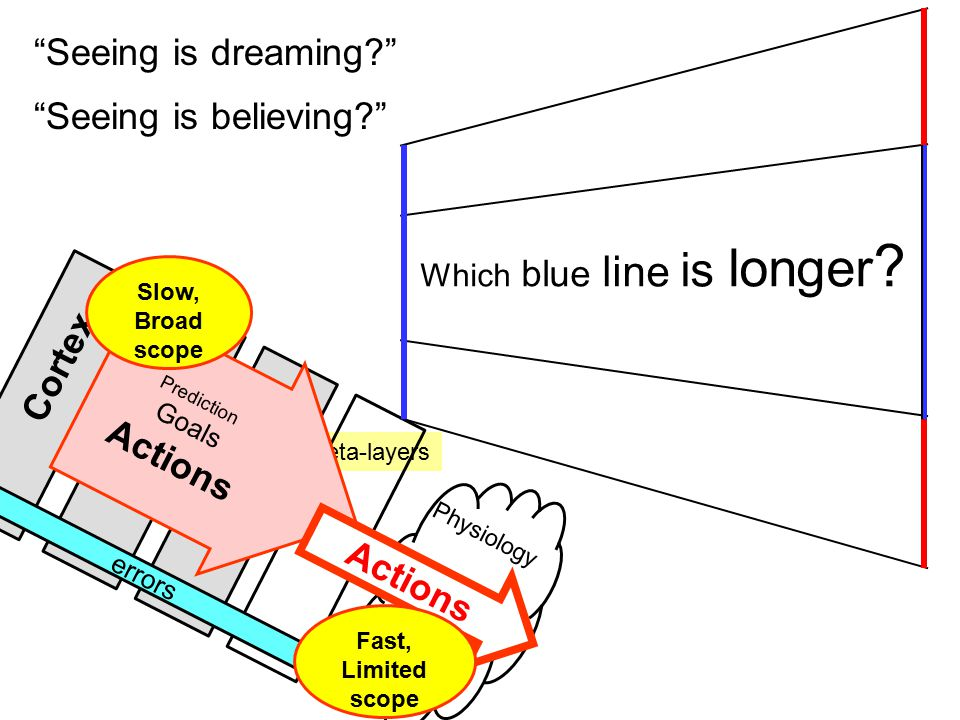 Meta-layers Physiology Organs Prediction Goals Actions errors Actions Cortex Fast, Limited scope Slow, Broad scope Which blue line is longer .