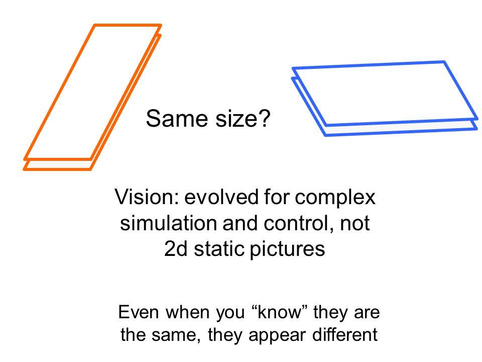 Same size.