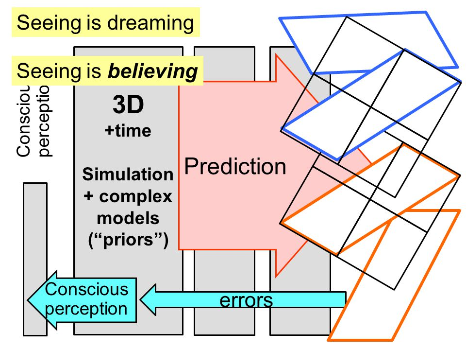 3D +time Simulation + complex models ( priors ) Seeing is dreaming Conscious perception Conscious perception Prediction errors Seeing is believing