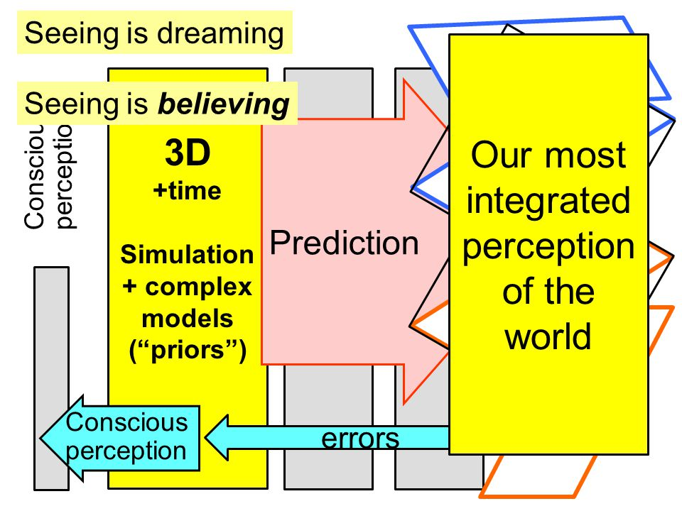 3D +time Simulation + complex models ( priors ) Seeing is dreaming Conscious perception Conscious perception Prediction errors Seeing is believing Our most integrated perception of the world