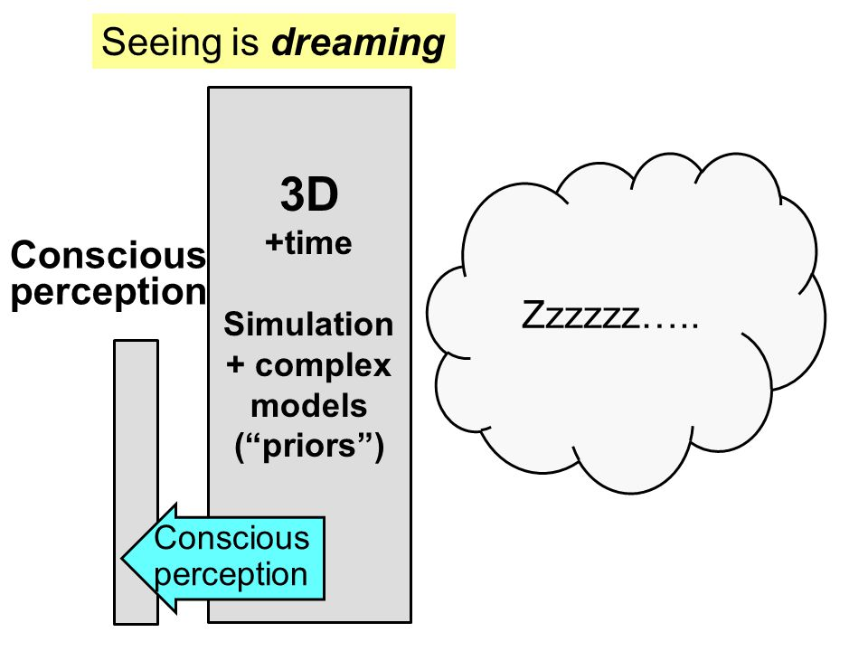 3D +time Simulation + complex models ( priors ) Seeing is dreaming Conscious perception Conscious perception Zzzzzz…..