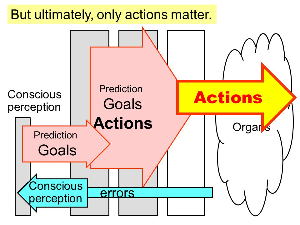 Physiology Organs Prediction Goals Actions errors Actions Conscious perception Prediction Goals Conscious perception But ultimately, only actions matter.