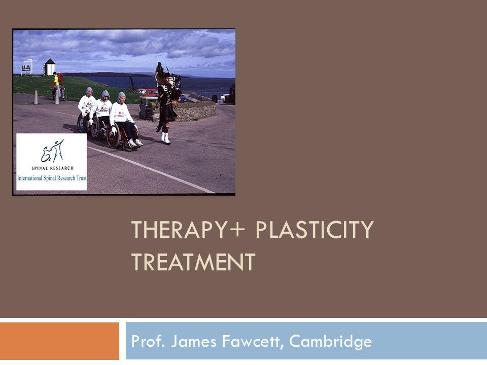 THERAPY+ PLASTICITY TREATMENT Prof. James Fawcett, Cambridge