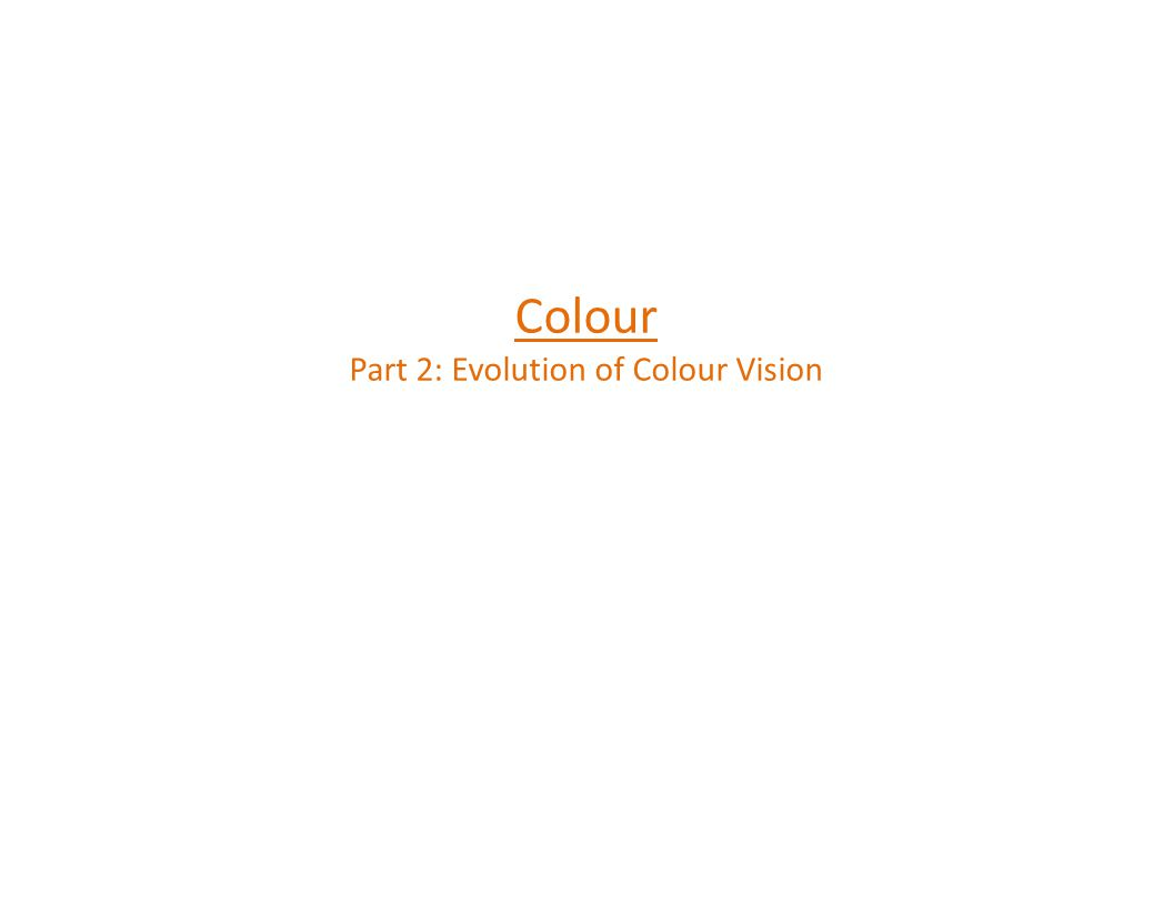 The Evolution of Colour Vision How good is this date.
