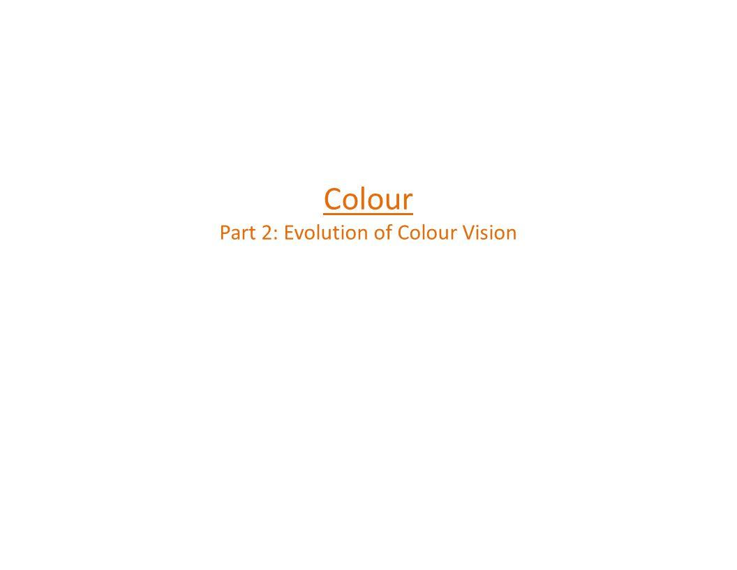 Colour Part 2: Evolution of Colour Vision