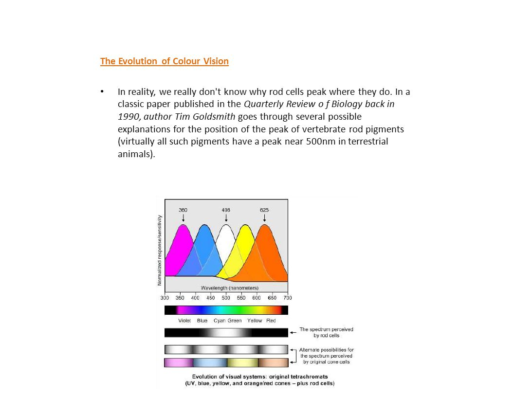 The Evolution of Colour Vision In reality, we really don't know why rod cells peak where they do. In a classic paper published in the Quarterly Review