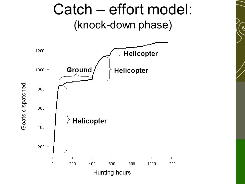 Catch – effort model: (knock-down phase) Helicopter Ground Goats dispatched Hunting hours