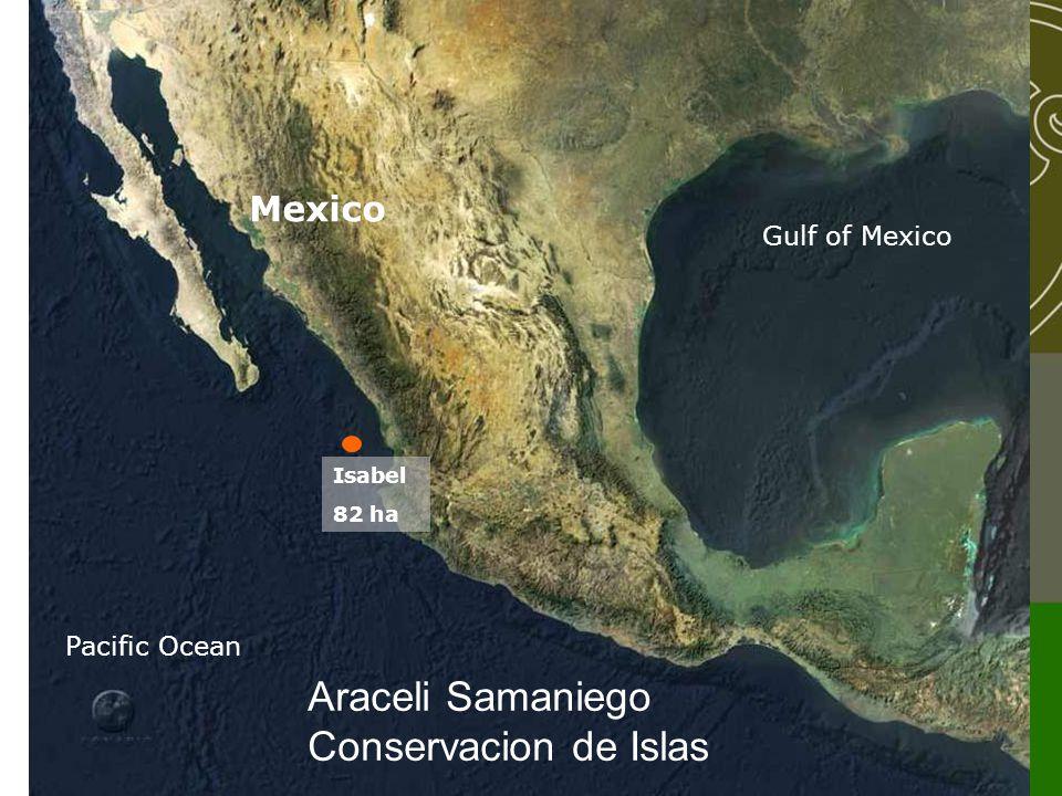 Isabel 82 ha Mexico Pacific Ocean Gulf of Mexico Araceli Samaniego Conservacion de Islas