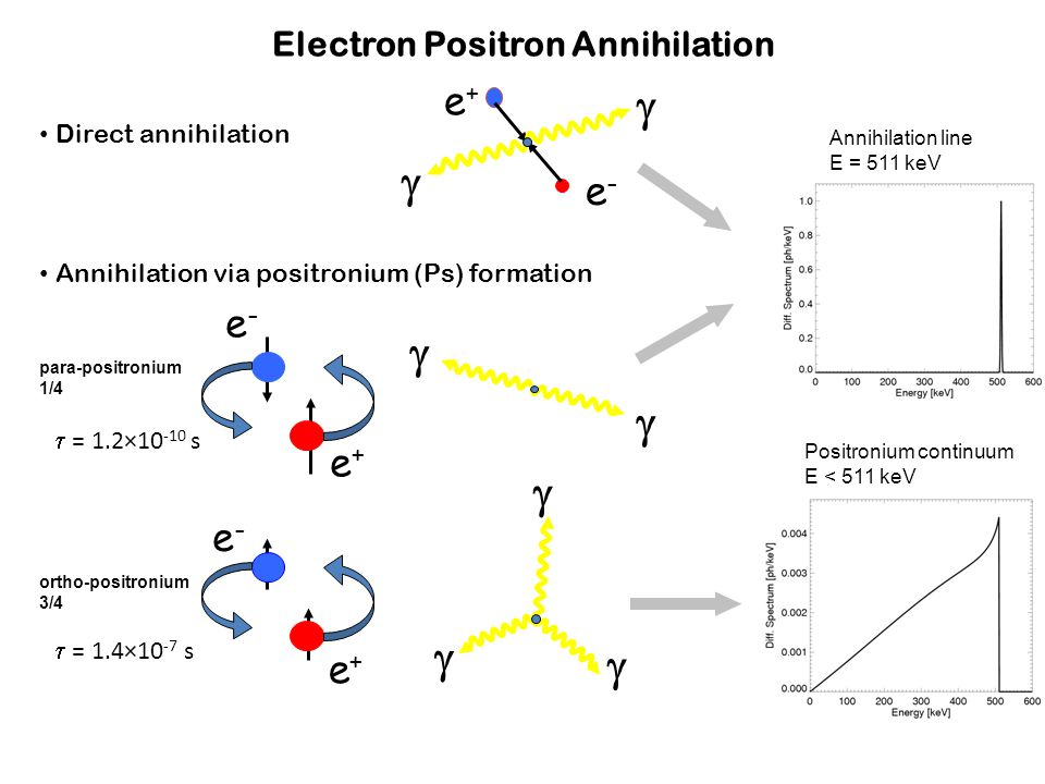 Electron Positron Annihilation e-e-   e+e+ e+e+ e-e- ortho-positronium 3/4 para-positronium 1/4 e+e+ e-e-      Direct annihilation Annihilation via positronium (Ps) formation Positronium continuum E < 511 keV Annihilation line E = 511 keV  = 1.2×10 -10 s  = 1.4×10 -7 s
