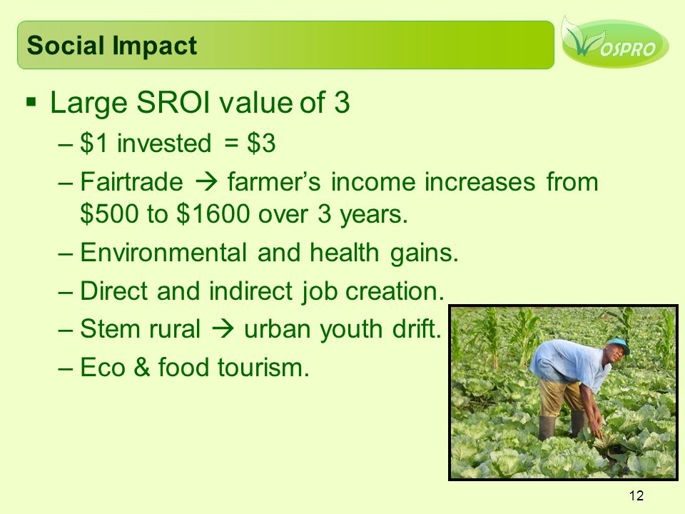 12 Social Impact  Large SROI value of 3 –$1 invested = $3 –Fairtrade  farmer's income increases from $500 to $1600 over 3 years.