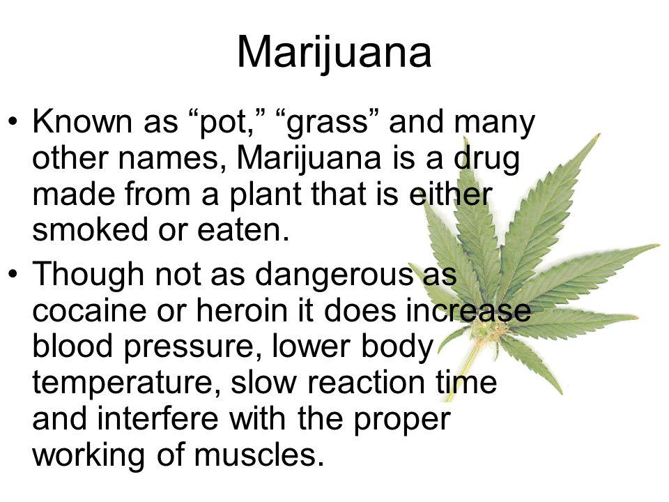 Marijuana Over time, marijuana damages the heart, lungs and brain.