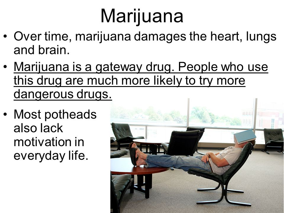 Marijuana Over time, marijuana damages the heart, lungs and brain. Marijuana is a gateway drug. People who use this drug are much more likely to try m