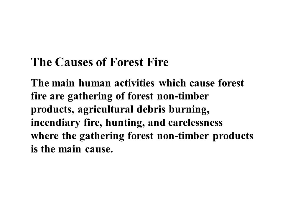 The Causes of Forest Fire The main human activities which cause forest fire are gathering of forest non-timber products, agricultural debris burning,