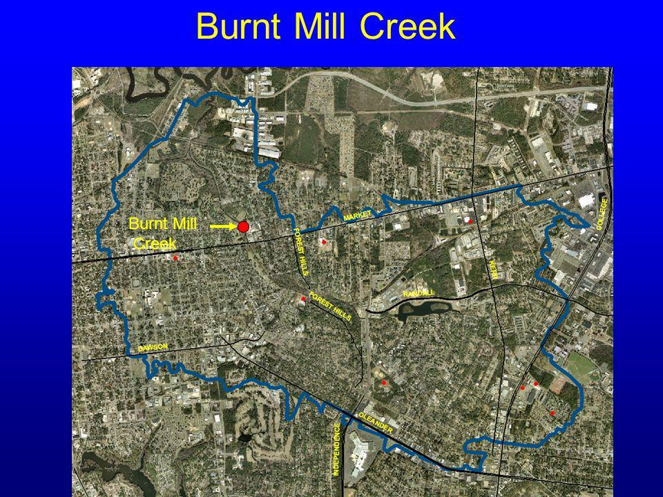 Burnt Mill Creek Burnt Mill Creek
