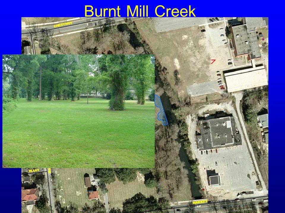 Burnt Mill Creek