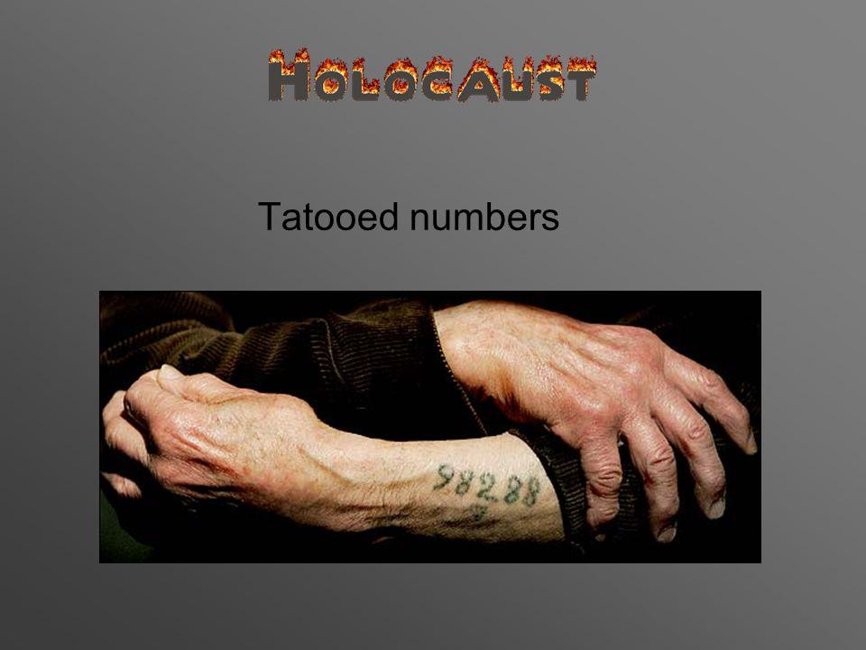 Tatooed numbers