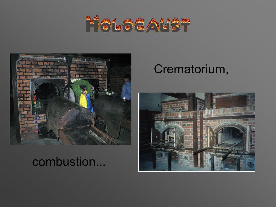 Crematorium, combustion...