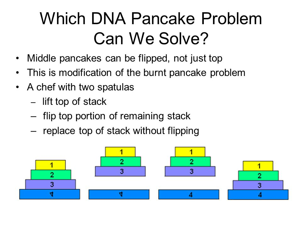 Which DNA Pancake Problem Can We Solve.