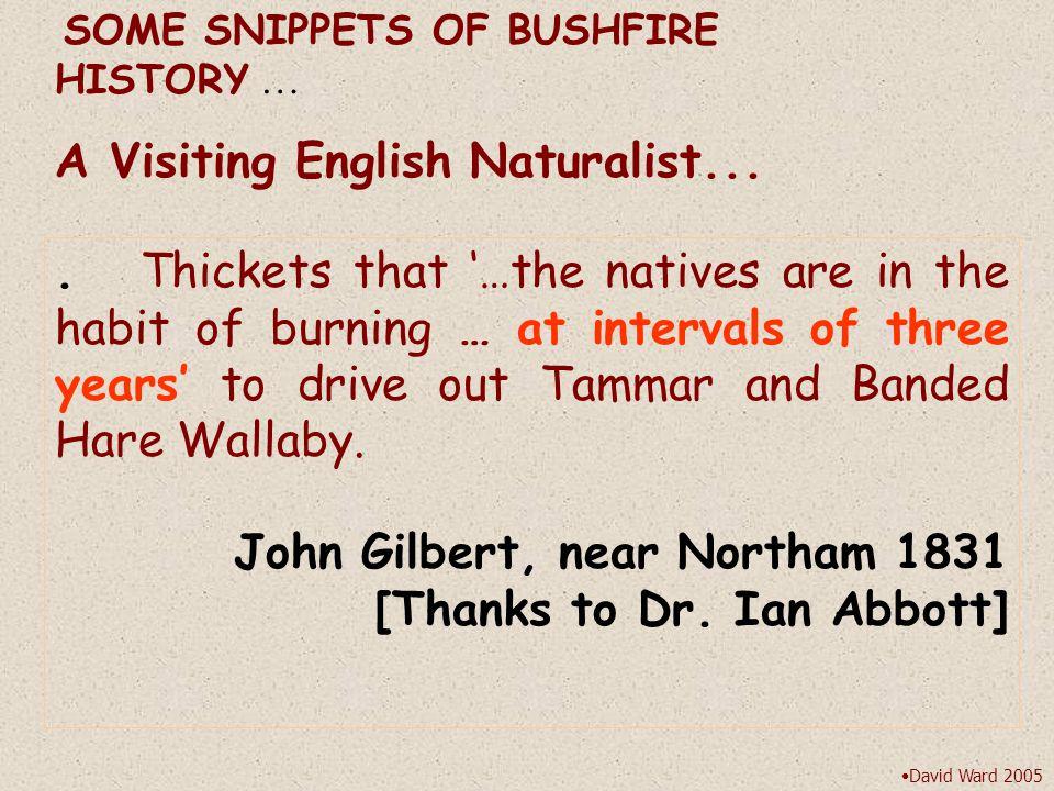 © David Ward 2005 n lim [P n ] =  B i n  n-r+1 Four Bushfire Management Scenarios ABOUT BALGA, BUSHFIRE MOSAICS & WATER