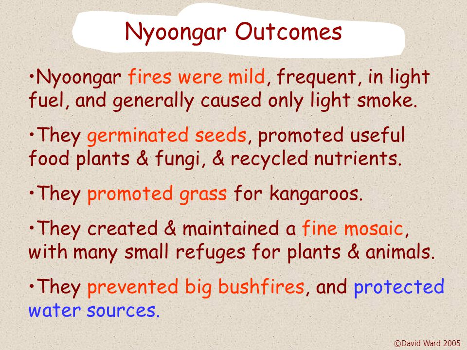 Nyoongar Fire Cycle Stable mosaic Years 1,5,9...Years 4,8,12...