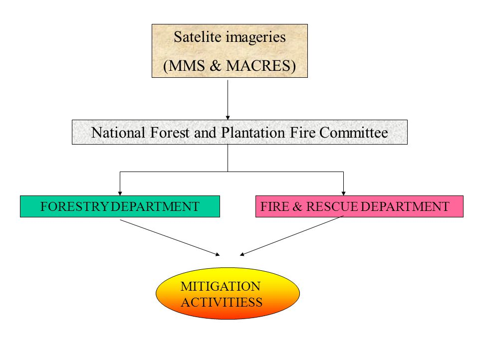 Satelite imageries (MMS & MACRES) National Forest and Plantation Fire Committee FORESTRY DEPARTMENTFIRE & RESCUE DEPARTMENT MITIGATION ACTIVITIESS