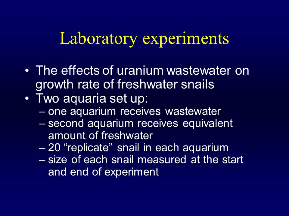 Laboratory experiments The effects of uranium wastewater on growth rate of freshwater snails Two aquaria set up: –one aquarium receives wastewater –second aquarium receives equivalent amount of freshwater –20 replicate snail in each aquarium –size of each snail measured at the start and end of experiment
