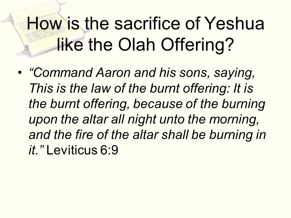 How is the sacrifice of Yeshua like the Olah Offering.