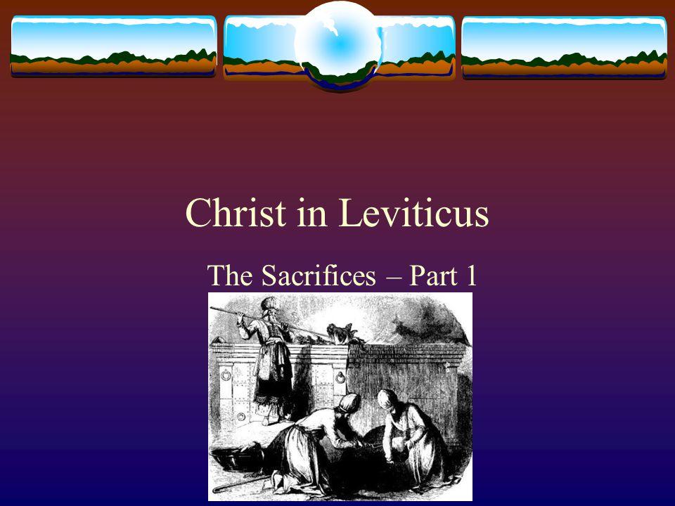 Christ in Leviticus The Sacrifices – Part 1