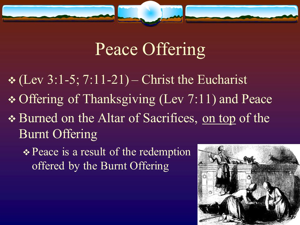 Peace Offering  (Lev 3:1-5; 7:11-21) – Christ the Eucharist  Offering of Thanksgiving (Lev 7:11) and Peace  Burned on the Altar of Sacrifices, on top of the Burnt Offering  Peace is a result of the redemption offered by the Burnt Offering