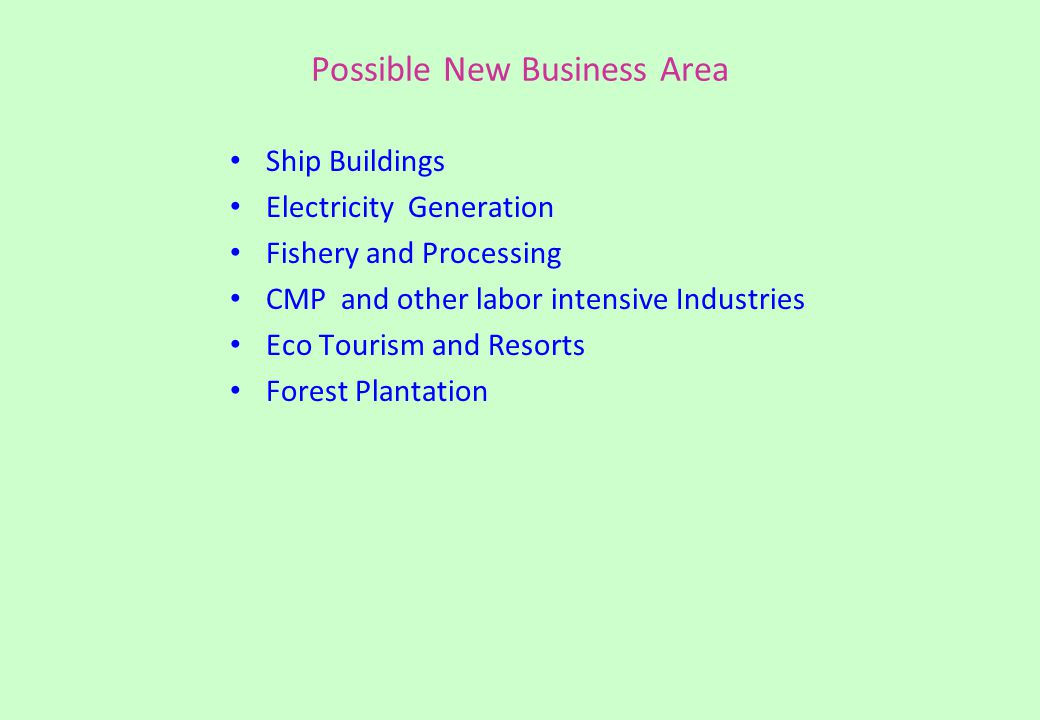 Possible New Business Area Ship Buildings Electricity Generation Fishery and Processing CMP and other labor intensive Industries Eco Tourism and Resorts Forest Plantation