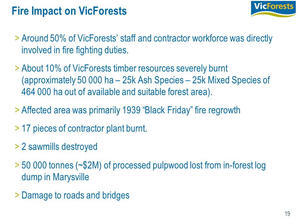19 Fire Impact on VicForests >Around 50% of VicForests' staff and contractor workforce was directly involved in fire fighting duties. >About 10% of Vi